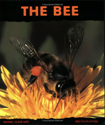 The Bee: Friend of the Flowers (Animal Close-Ups): Paul Starosta