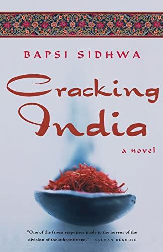 9781571310484: Cracking India: A Novel