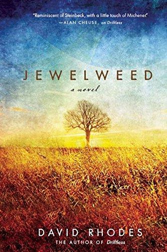 9781571311009: Jewelweed: A Novel