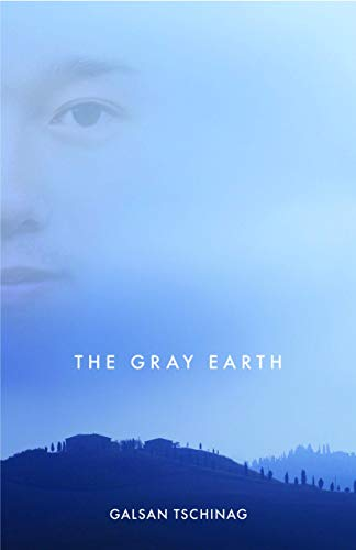 9781571311221: The Gray Earth