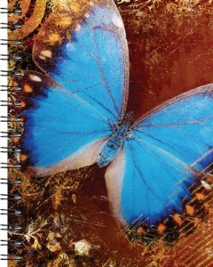9781571338228: Wire-o Journal - Blue Butterfly - ..Medium ( Lined both sides - Black wire-o )