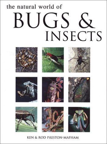9781571452887: Natural World of Bugs and Insects