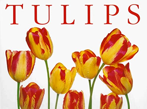 9781571456076: Tulips