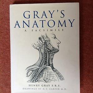 9781571457271: Gray's Anatomy : A Facsimile