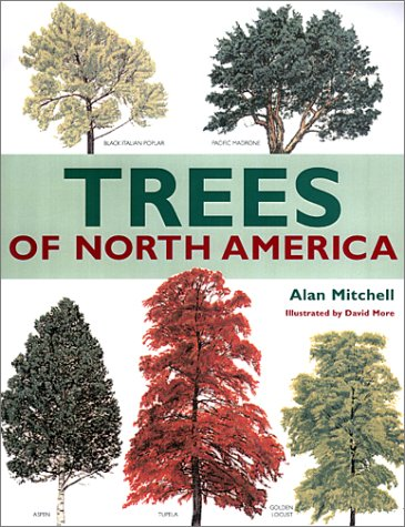 9781571458773: Trees of North America