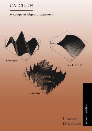 9781571460387: Calculus : A Computer Algebra Approach (2nd ed)