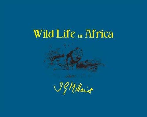 9781571571946: Wild Life In Africa