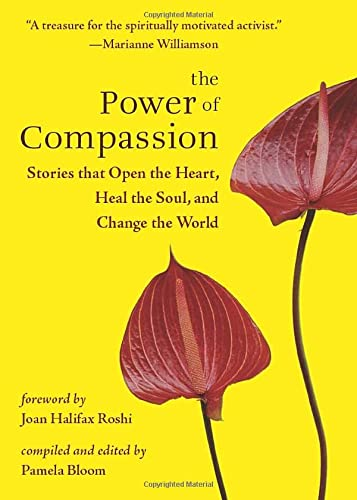 9781571746290: The Power of Compassion: Stories That Open the Heart, Heal the Soul, and Change the World