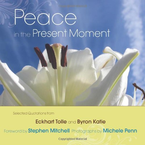 9781571746436: Peace in the Present Moment
