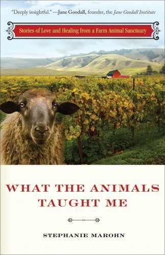 What the Animals Taught Me: Stories of Love and Healing from a Farm Animal Sanctuary: Marohn, ...