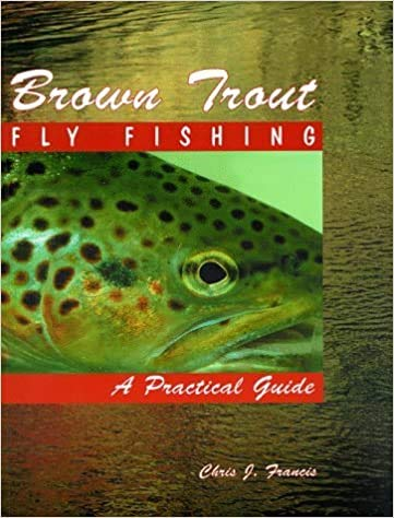 9781571880642: Brown Trout Fly Fishing