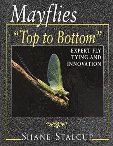 Mayflies: Top to Bottom
