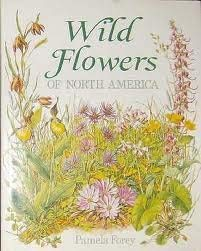 9781572152618: Wild Flowers of North America