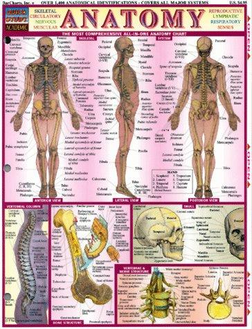 9781572222779: Anatomy
