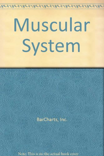 Muscular System: BarCharts, Inc.