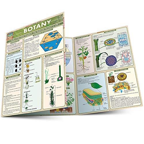 9781572225626: Botany (Quickstudy: Academic)
