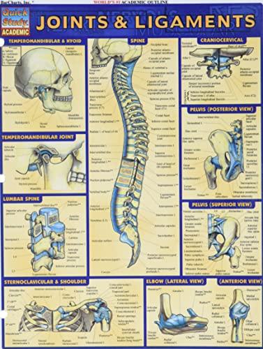 Joints & Ligaments Laminate Reference Chart (Medical: Lisa Drucker Kaaren