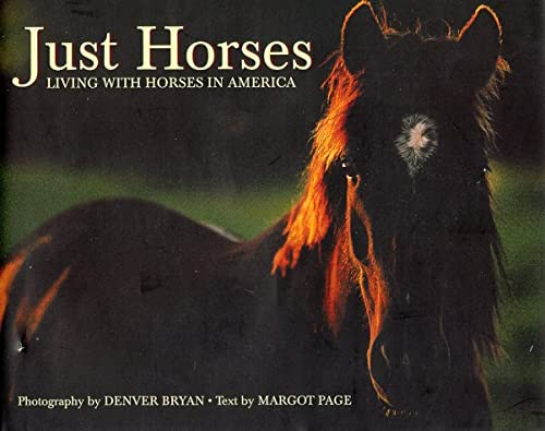 9781572231375: Just Horses (Just (Willow Creek))