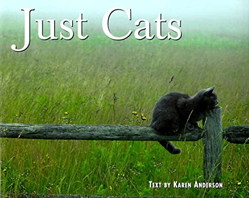9781572231870: Just Cats