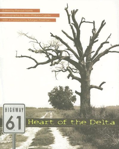 Highway 61: Norris/Cyprés