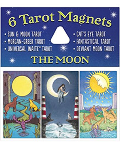 9781572817470: Moon Magnets
