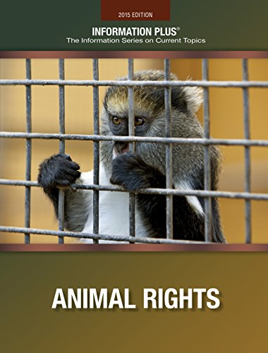 Animal Rights (Information Plus)