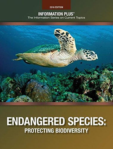 9781573026987: Endangered Species: Protecting Biodiversity (Information Plus Reference Series)