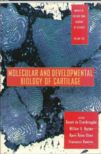 9781573310116: Molecular and Developmental Biology of Cartilage (Annals of the New York Academy of Sciences)