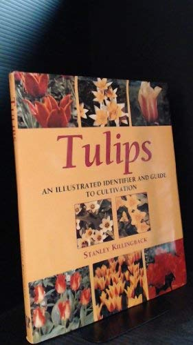 9781573355018: Tulips: An Illustrated Identifier and Guide to Cultivation