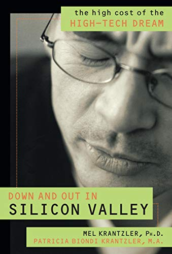 9781573929264: Down and Out in Silicon Valley: The High Cost of the High Tech Dream