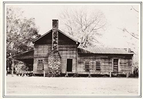 9781574415285: Dog Trots & Mud Cats: The Texas Log House