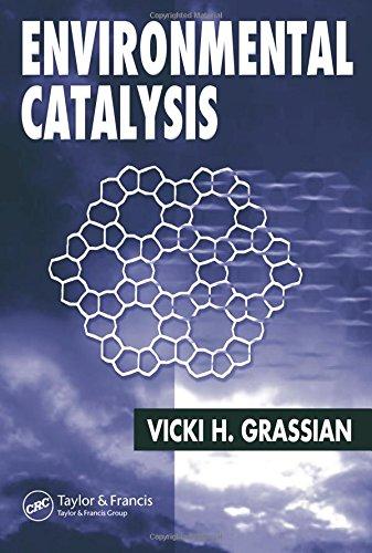Environmental Catalysis (Hardback)