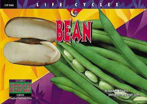 9781574715804: Bean (Life Cycles)