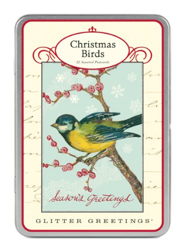 9781574896039: Christmas Birds Glitter Greetings Postcards