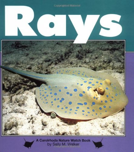 Rays (Nature Watch (Lerner)): Walker, Sally M.