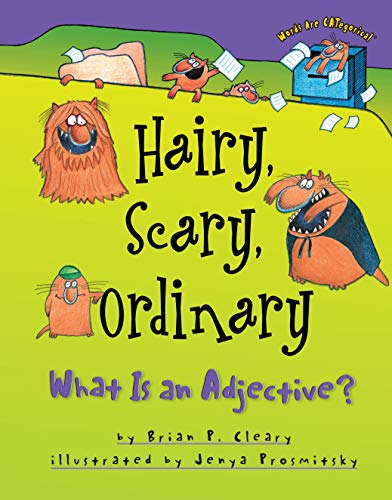 9781575054018: Hairy, Scary, Ordinary: What Is an Adjective? (Words Are Categorical)