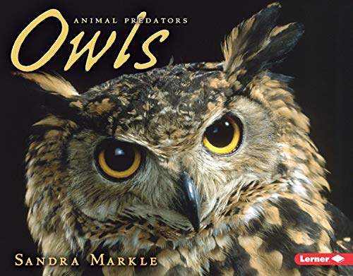 Owls (Animal Predators): Sandra Markle