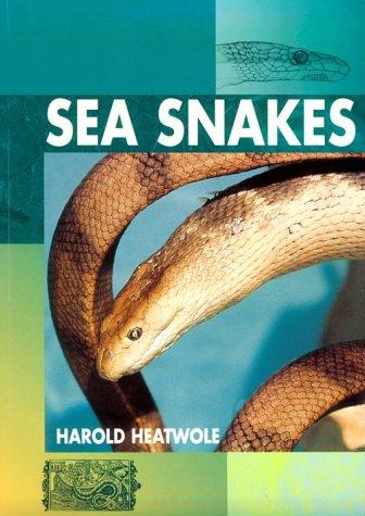 9781575241166: Sea Snakes