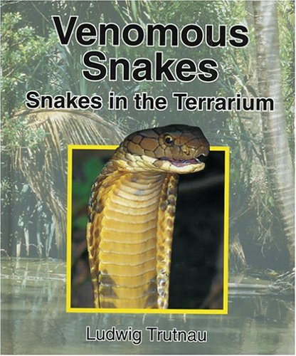 9781575241388: Venomous Snakes: Snakes in the Terrarium (Vol 2)