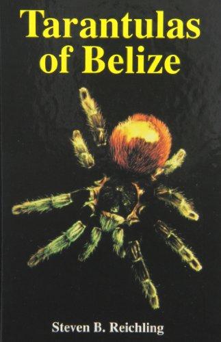 9781575242064: Tarantulas of Belize