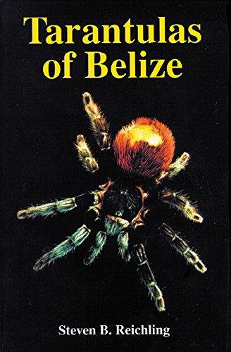 9781575242286: Tarantulas of Belize