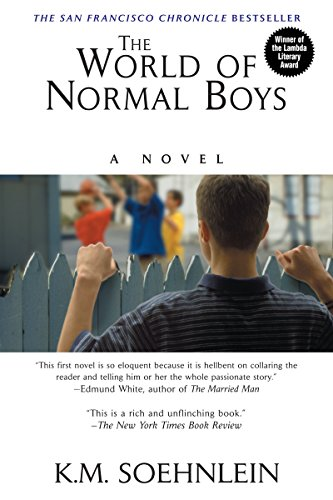 9781575666617: The World Of Normal Boys