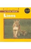 9781575724676: Lions (In the Wild)