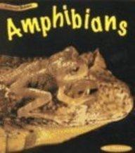 9781575725406: Amphibians (Animal Babies (Heinemann Library Paperback))