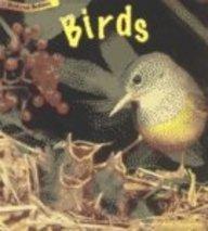 9781575725413: Birds (Animal Babies (Heinemann Library Paperback))