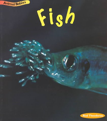9781575725420: Fish (Animal Babies)