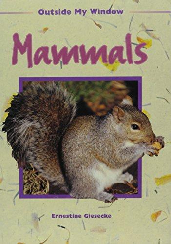 9781575726816: Mammals (Outside My Window)
