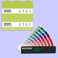 9781576163924: 710346 - Pantone Process Color Guide Uncoated Stock