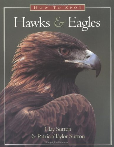 9781576300008: How to Spot Hawks and Eagles