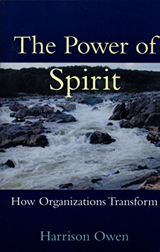 9781576750902: The Power of Spirit: How Organizations Transform